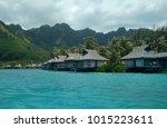 moorea  tahiti  french... | Shutterstock . vector #1015223611