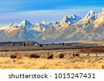 Only The Grand Tetons Could...