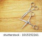 hair cutting shears | Shutterstock . vector #1015252261