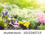 beautiful blooming garden with... | Shutterstock . vector #1015260715