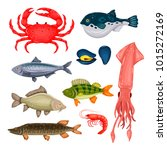 seafood set with crab  fish ...   Shutterstock . vector #1015272169