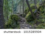 rock lined trail through the... | Shutterstock . vector #1015285504
