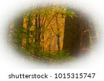 creative effects have made an... | Shutterstock . vector #1015315747