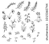 Hand Drawn Floral Elements ...