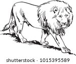 lion. vector isolated animal | Shutterstock .eps vector #1015395589