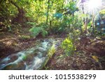 beautiful stream water flowing... | Shutterstock . vector #1015538299