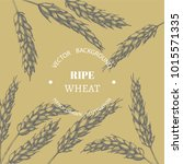 vector vintage background with... | Shutterstock .eps vector #1015571335