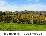 napa valley california vineyard ... | Shutterstock . vector #1015740835