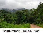 travelling the rainforest ... | Shutterstock . vector #1015823905
