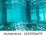 underwater view of under a pier ... | Shutterstock . vector #1015956679