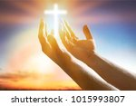 human hands open palm | Shutterstock . vector #1015993807