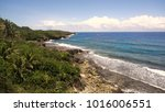 rocky beach with palm trees ... | Shutterstock . vector #1016006551