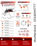 simple flat style infographics... | Shutterstock .eps vector #1016044777