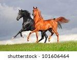 Two Arabians