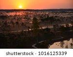 sunrise in swamp kemeri latvia    Shutterstock . vector #1016125339