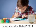 caucasian boy is carefully... | Shutterstock . vector #1016132119
