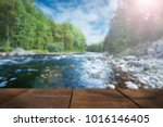 nature blurred background with... | Shutterstock . vector #1016146405