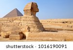 giza cairo egypt   october 2009 ... | Shutterstock . vector #1016190091