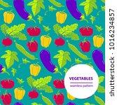 vector doodle vegetables... | Shutterstock .eps vector #1016234857