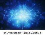 human brain 2d illustration | Shutterstock . vector #1016235535