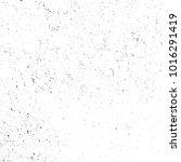 grunge vector background... | Shutterstock .eps vector #1016291419