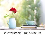 teal cup and red rose in blue... | Shutterstock . vector #1016335105
