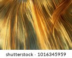 abstrack close up photo of... | Shutterstock . vector #1016345959