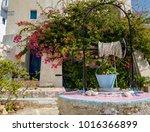 beauties of the village of...   Shutterstock . vector #1016366899