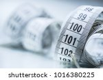 curved measuring tape.... | Shutterstock . vector #1016380225