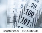 curved measuring tape.... | Shutterstock . vector #1016380231