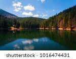 amazing spring scenery on... | Shutterstock . vector #1016474431