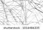 abstract digital fractal... | Shutterstock . vector #1016486335