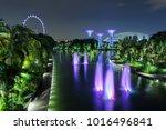 supertree grove forest... | Shutterstock . vector #1016496841