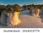 rock formation stone mushrooms... | Shutterstock . vector #1016515774