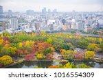 beautiful landscape with autumn ... | Shutterstock . vector #1016554309