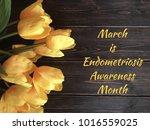 endometriosis awareness month   | Shutterstock . vector #1016559025