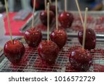candy apples on sticks at a...   Shutterstock . vector #1016572729