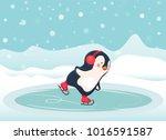 penguin cartoon. penguin ice... | Shutterstock .eps vector #1016591587