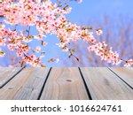 selective focus image of empty... | Shutterstock . vector #1016624761
