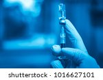 medical hand gloves dispose...   Shutterstock . vector #1016627101