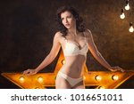 beautiful sexy young woman in... | Shutterstock . vector #1016651011