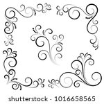 black and white vectore curl... | Shutterstock .eps vector #1016658565