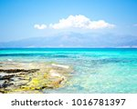 wonderful beach of the island... | Shutterstock . vector #1016781397