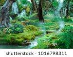 green garden with waterfall | Shutterstock . vector #1016798311