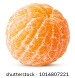 fresh peeled tangerine isolated ... | Shutterstock . vector #1016807221