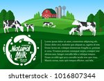 vector milk illustration.... | Shutterstock .eps vector #1016807344