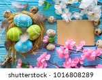 painted easter eggs in the nest ... | Shutterstock . vector #1016808289