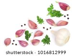 garlic with peppercorns and... | Shutterstock . vector #1016812999
