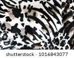 carpet zebra texture for... | Shutterstock . vector #1016843077