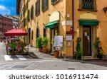 narrow cozy street in pisa ... | Shutterstock . vector #1016911474